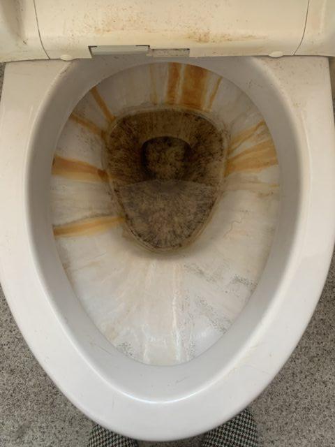 トイレ クリーニング 川口市〜